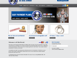 10 pages responsive SEO friendly WordPress website
