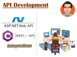 Develop a web api solution