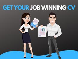 Create an ATS-FRIENDLY Professional CV (2 files)
