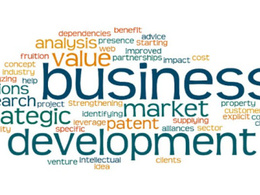 Be your business developer from the scratch