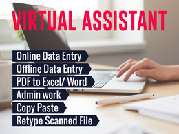 Do High Quality Data Entry / Data Extraction for 2 Hour