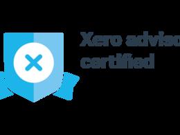 Xero company file health check up