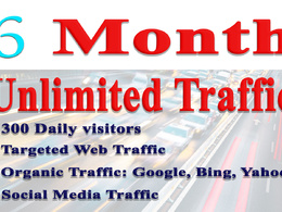 6 months UNLIMITED Real traffic for your website