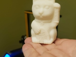 Print a 3D model for you