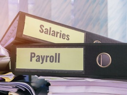 Payroll and HR Generalist Services