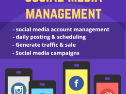Be your social media business manager and advertiser