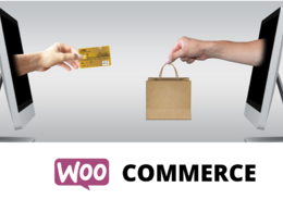 Add 200 products to your WooCommerce store