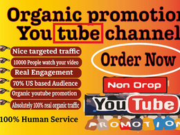 Promote your youtube video by paid marjeting increase 10k views