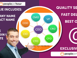 Give You CEO,CFO, HR, Email, Website From Linkedin & Google