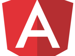 Build website  with ANGULAR JS