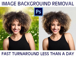 Background Removal, Cutout simple photo