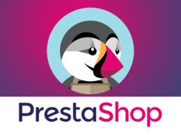 Develop, customize and fix prestashop website