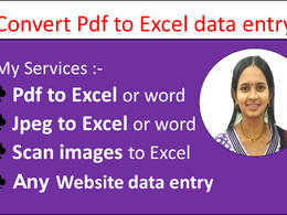 Do 2 hours Excel Data Entry, Copy Paste, typing and pdf to excel