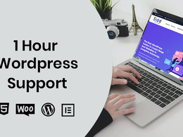 Provide 1 hour of update/customization to your WordPress website