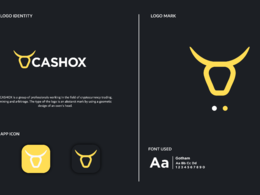 Exclusive Logo Design 3 concepts From Award Winning Designer