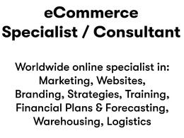 Provide 1 hour of eCommerce business consultancy