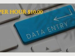 Offer DATA ENTRY per hour