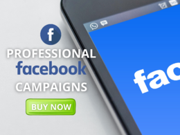 Set Up, Manage and Optimize Your Facebook Ad Campaign