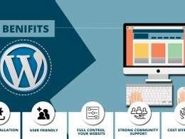 Design & Develop Responsive WordPress Website for any business