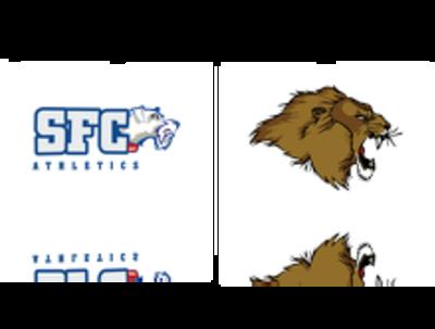 Redesign logo / logo vectorization