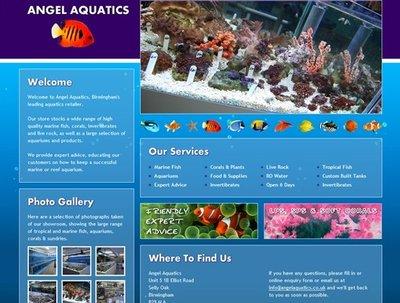 Design a single page responsive Wordpress website