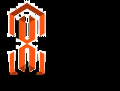 Modify magento shop / website