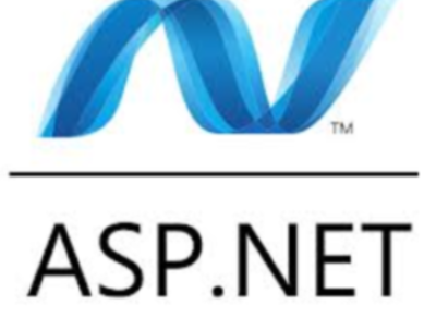 Do one ASP.NET fixing service