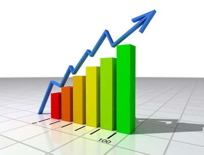 Provide you with a full web site and SEO audit