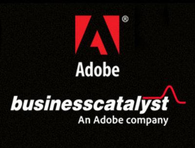 Setup a Adobe business catalyst website