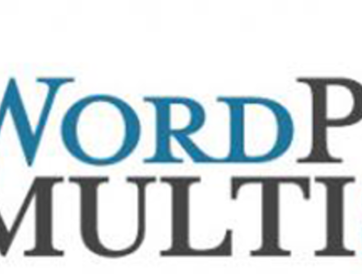 Set up a WordPress multisite for you