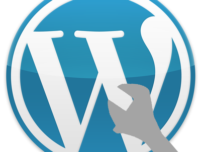 Help fix your Wordpress issues