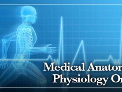Teach very basic anatomy, physiology and medical terminology