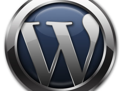 Professionally SEO optimise your Wordpress website