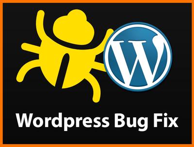 Fix a Wordpress bug, Error or Hack