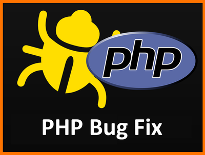 Fix a PHP bug or Error