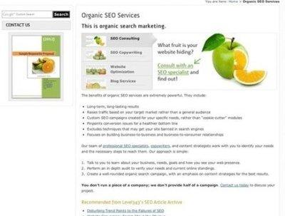 Develop high precision SEO content, write top notch SEO articles