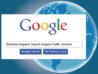 Send 2500 Genuine Organic Google Search Engine Traffic to your Website