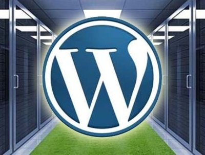 Setup a wordpress site for you! (also offer hosting)