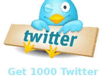 Add 1000 permanent Twitter followers
