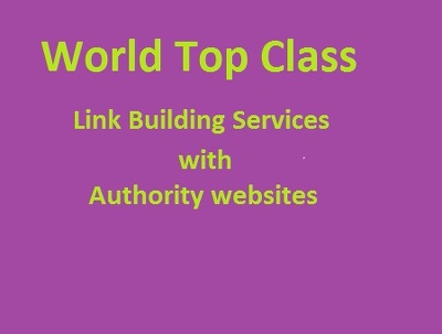 offer top class link building with authority website
