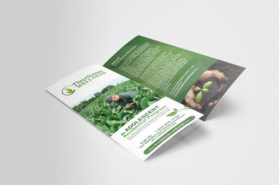 Design a brochure with unlimited revisions only