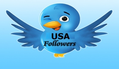 Bring 500+ genuine real US Twitter followers to improve your social media presence