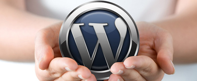 Fix your Wordpress or Website issue