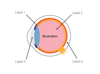 Draw an Illustration Diagram with labels - to explain