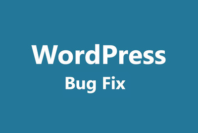 Fix any WordPress Issue (single issue)