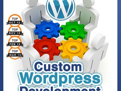 Provide up to 2 hours of WordPress development / Updates / Admin