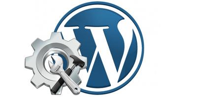 Customise and set up any wordpress theme