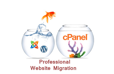 Migrate your Wordpress/joomla / website to new hosting