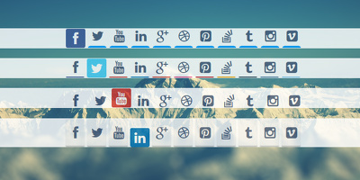 Integrate social media icons in your website