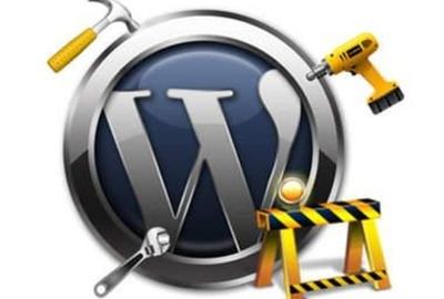 Fix any wordpress Issues ( 1 hour fast delivery  )